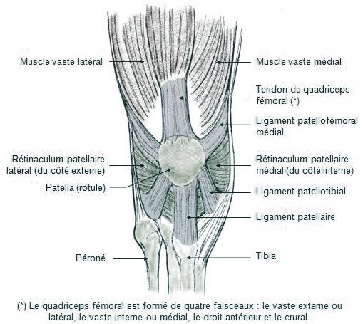 Instabilité de Rotule - Dr. Benjamin GUENOUN ecedee455f5